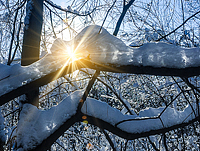 Rodnik-sun-snow_pr1
