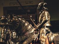 Viennese knights_pr