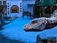 Dragons_Izmailovo_pr