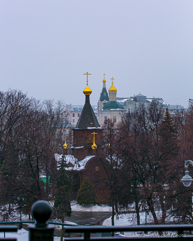 IMG_3126_(650px)