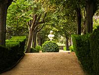 Clotida_garden_pr