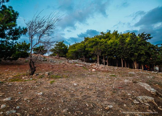 _MG_4173_Crete_Rethymno_Fortezza