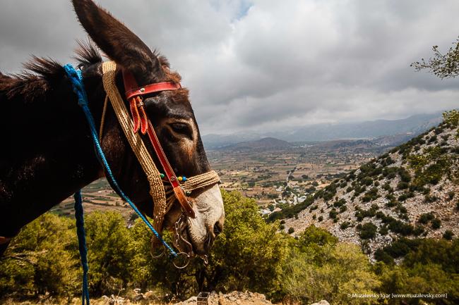 _MG_3768_Crete_RoadTrip