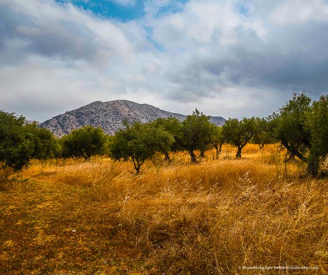 _MG_3936_Crete_RoadTrip