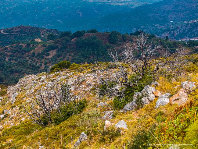 _MG_3983_Crete_RoadTrip