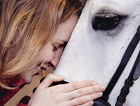 horse_love_pr